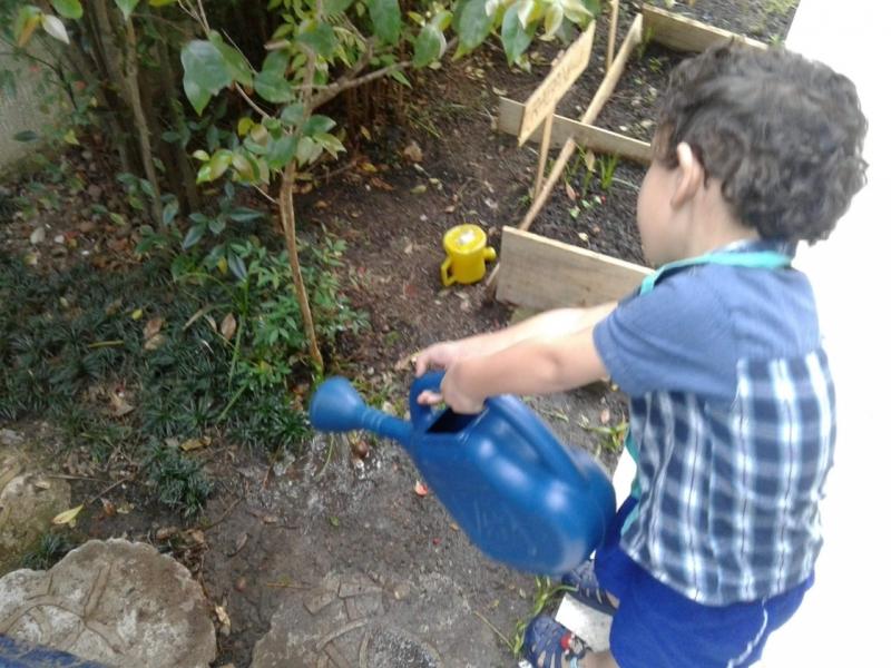 Educação Infantil Colégio Integral Custo Jardim Leblon - Escola Infantil Período Integral em São Bernardo